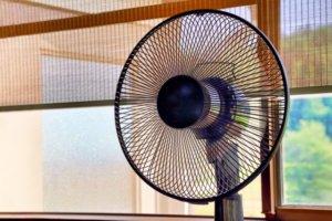 扇風機の羽
